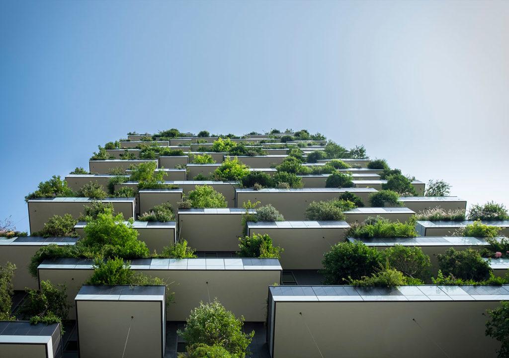 Balconi con piante (veduta dal basso)